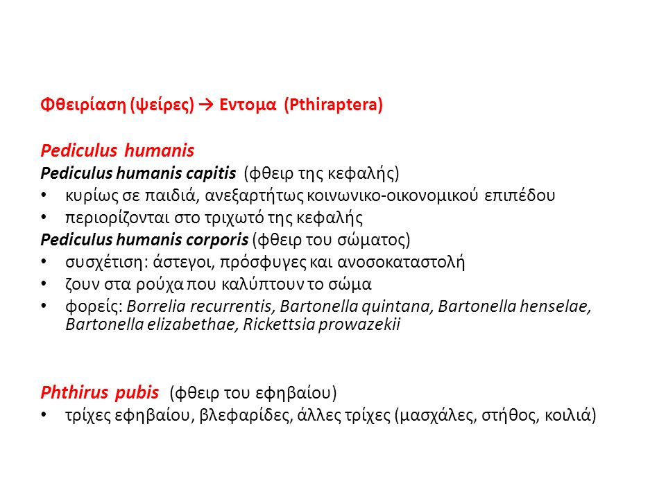 Phthirus pubis (φθειρ του εφηβαίου)