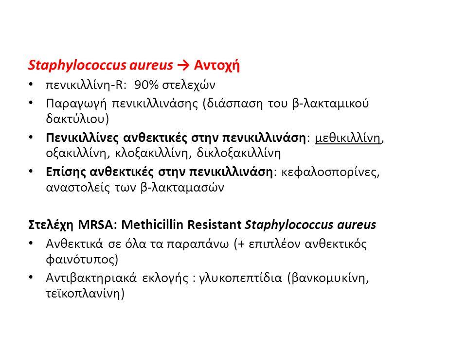 Staphylococcus aureus → Αντοχή