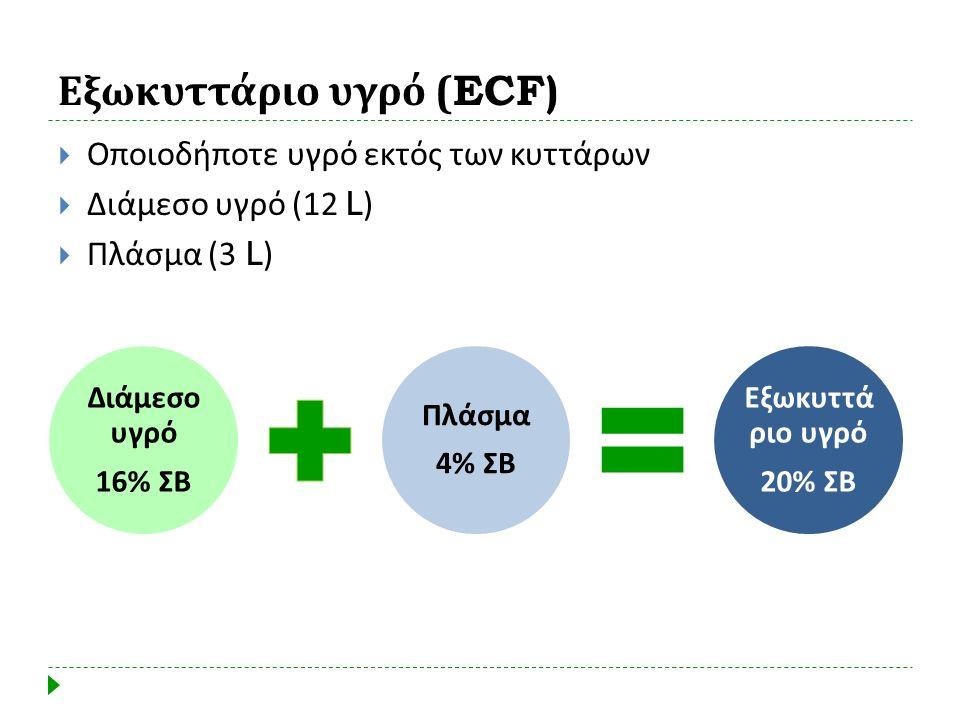 Εξωκυττάριο υγρό (ECF)