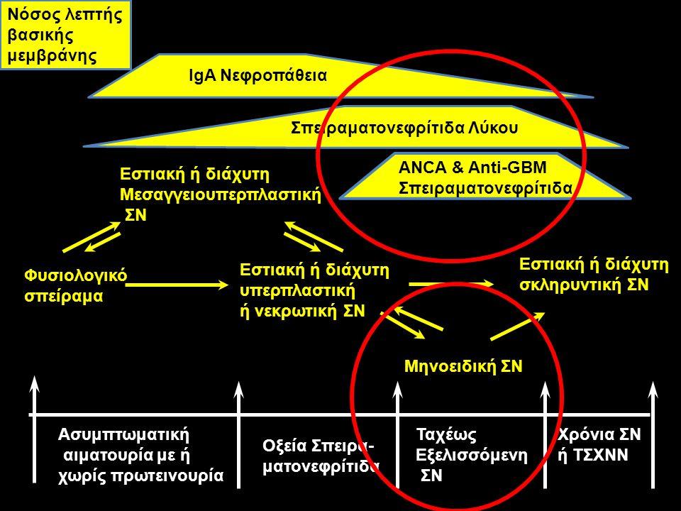 Νόσος λεπτής βασικής μεμβράνης