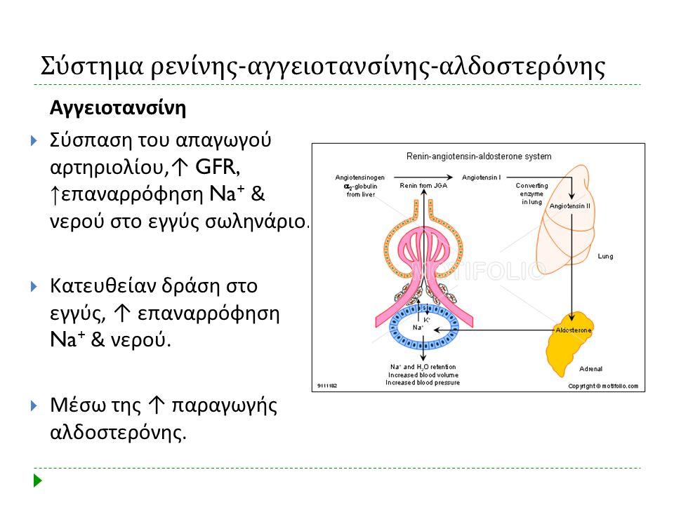 Σύστημα ρενίνης-αγγειοτανσίνης-αλδοστερόνης