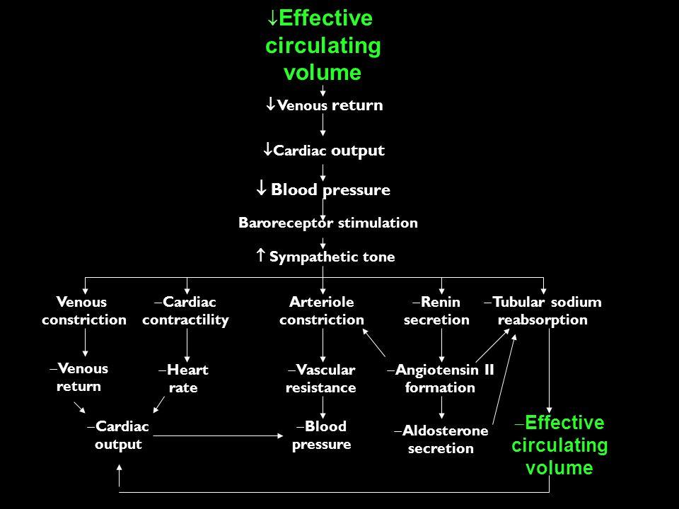 Baroreceptor stimulation