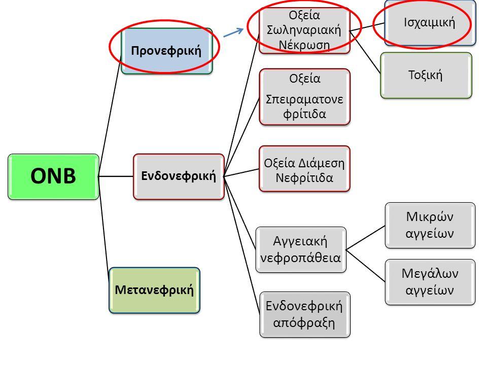 ΟΝΒ Προνεφρική Ενδονεφρική Οξεία Σπειραματονεφρίτιδα
