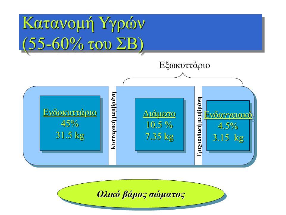 Κατανομή Υγρών (55-60% του ΣΒ) Εξωκυττάριο Ενδοκυττάριο Διάμεσο