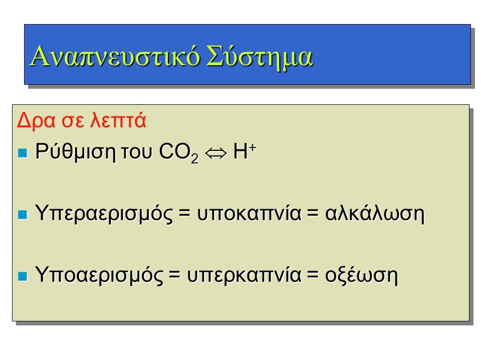 Αναπνευστικό Σύστημα Δρα σε λεπτά Ρύθμιση του CO2  H+