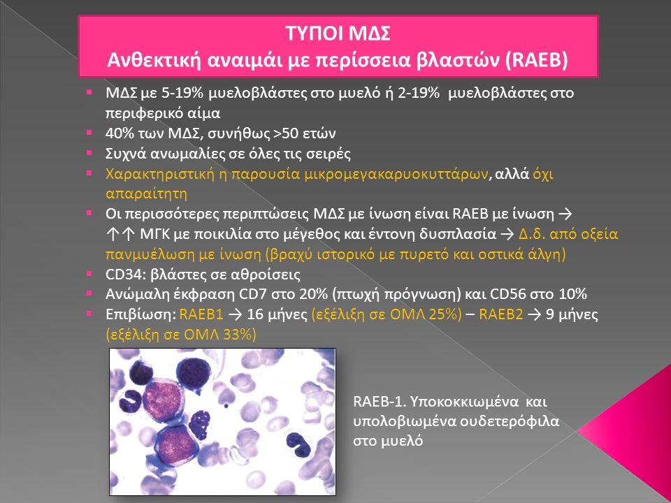 Ανθεκτική αναιμάι με περίσσεια βλαστών (RAEB)