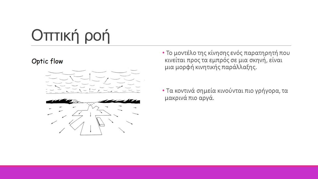 Οπτική ροή Το μοντέλο της κίνησης ενός παρατηρητή που κινείται προς τα εμπρός σε μια σκηνή, είναι μια μορφή κινητικής παράλλαξης.