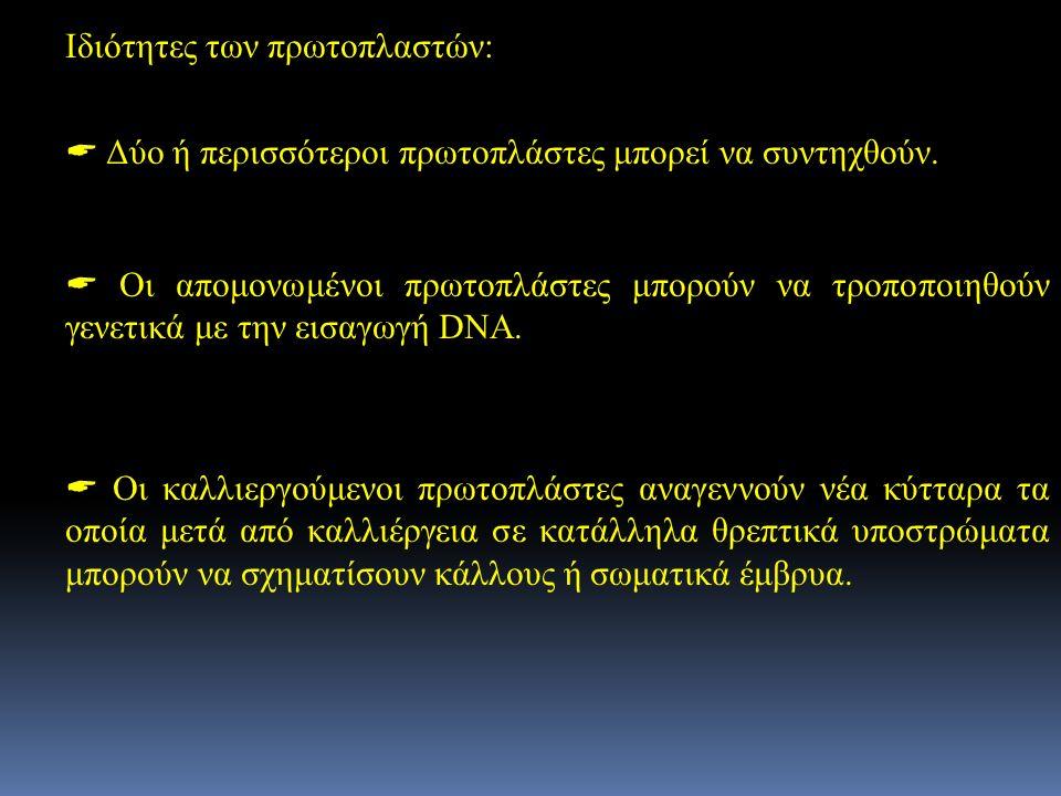 Ιδιότητες των πρωτοπλαστών: