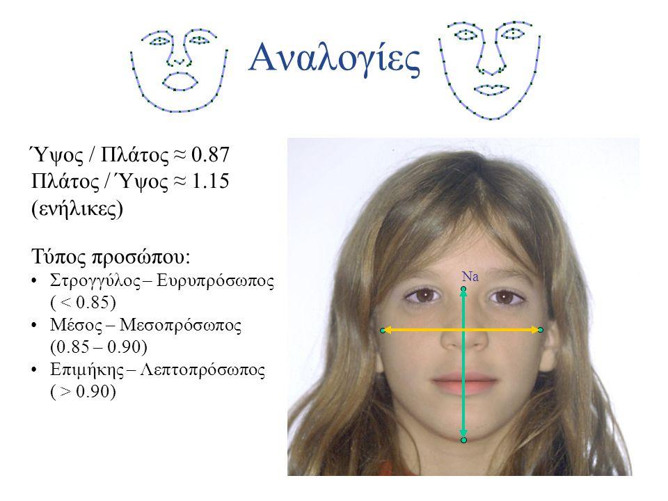 Αναλογίες Ύψος / Πλάτος ≈ 0.87 Πλάτος / Ύψος ≈ 1.15 (ενήλικες)