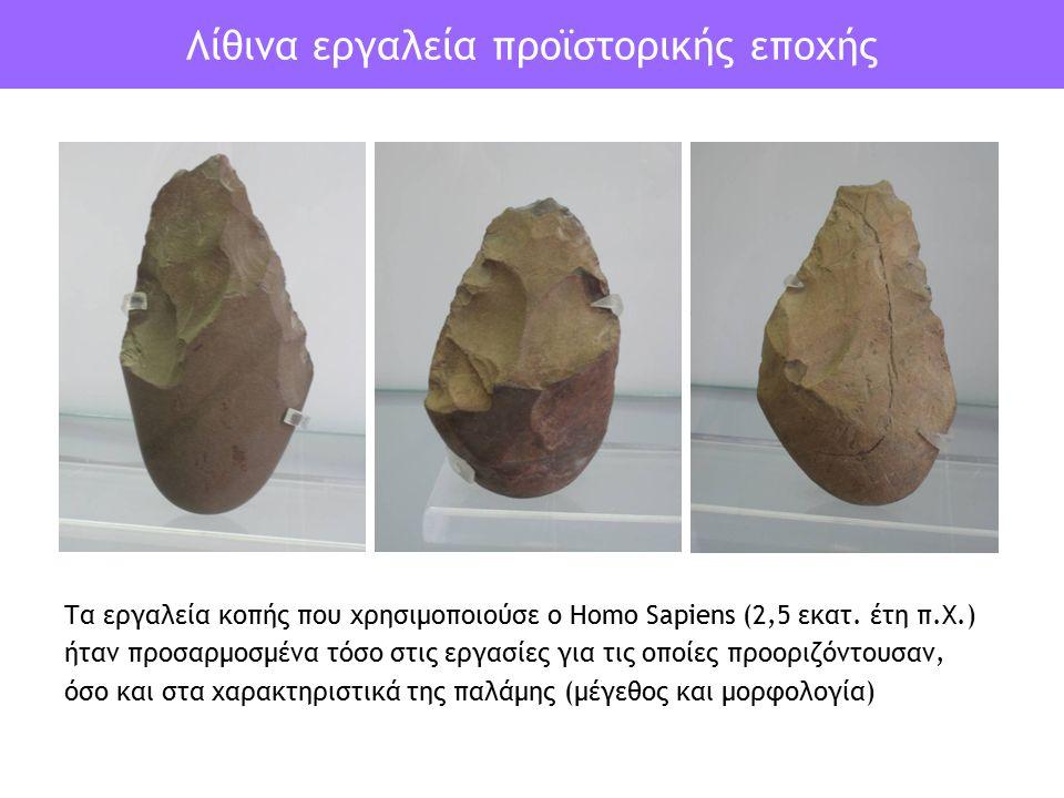 Λίθινα εργαλεία προϊστορικής εποχής