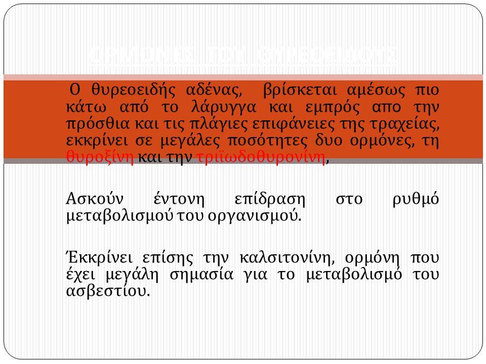 ΟΡΜΟΝΕΣ ΤΟΥ ΘΥΡΕΟΕΙΔΟΥΣ