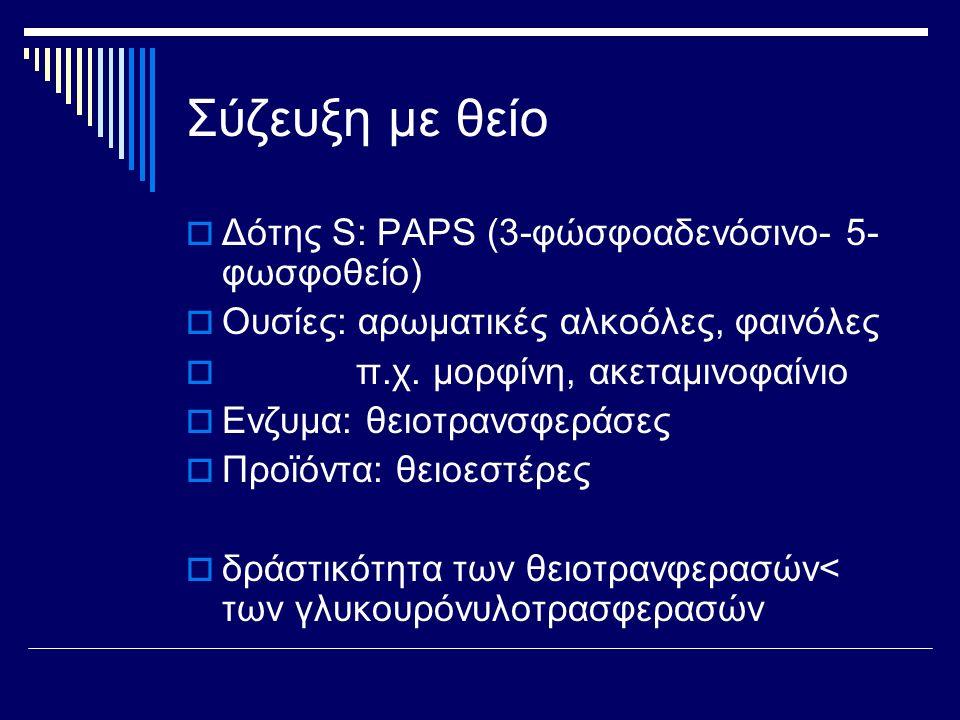 Σύζευξη με θείο Δότης S: PAPS (3-φώσφοαδενόσινο- 5- φωσφοθείο)