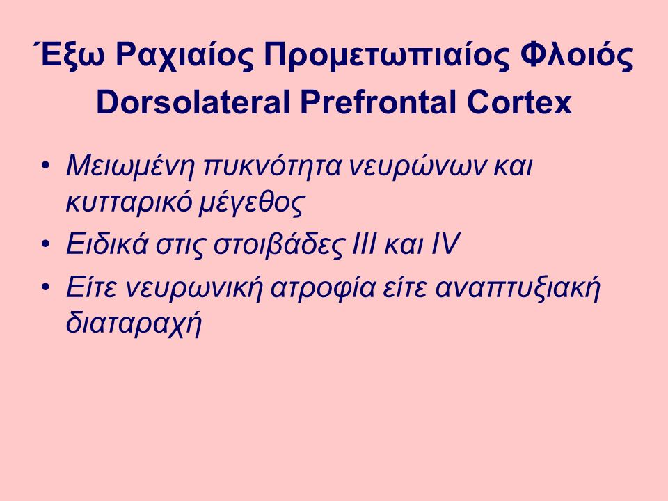Έξω Ραχιαίος Προμετωπιαίος Φλοιός Dorsolateral Prefrontal Cortex
