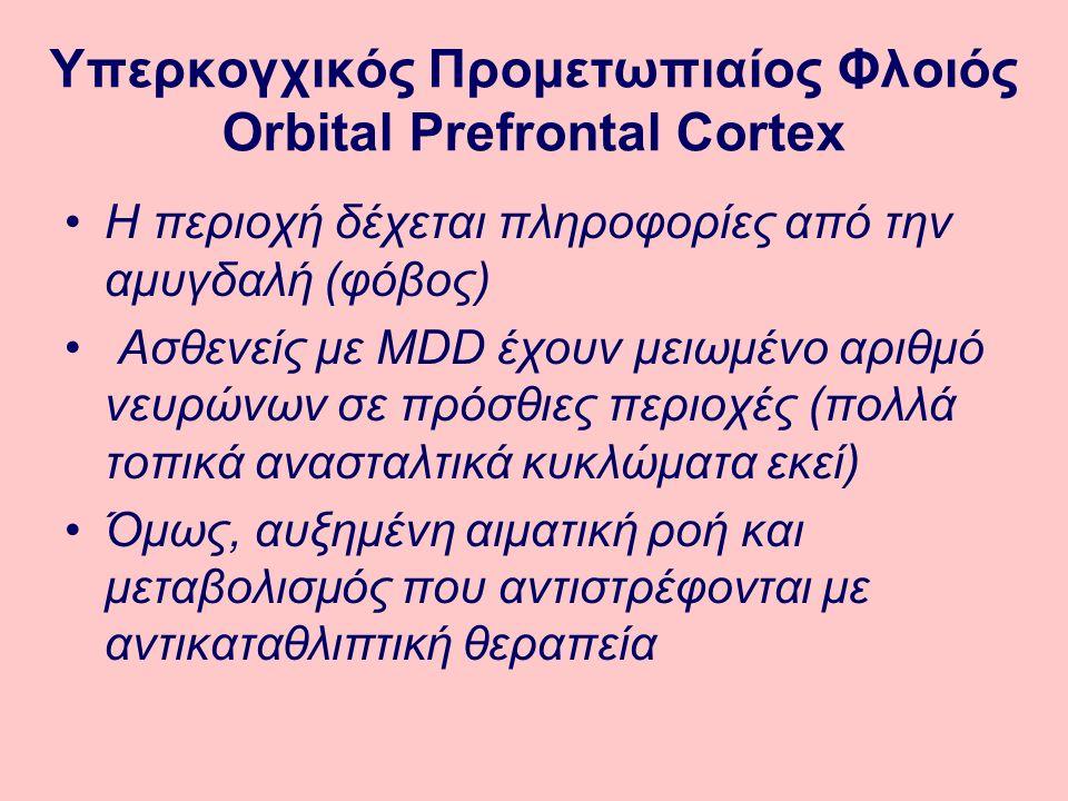 Υπερκογχικός Προμετωπιαίος Φλοιός Orbital Prefrontal Cortex