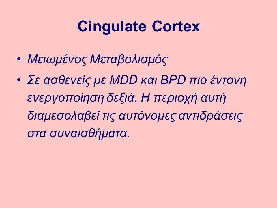 Cingulate Cortex Μειωμένος Μεταβολισμός