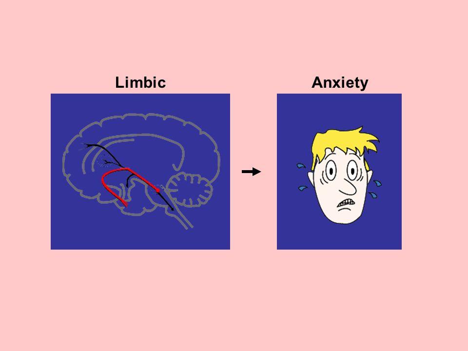 Limbic Anxiety