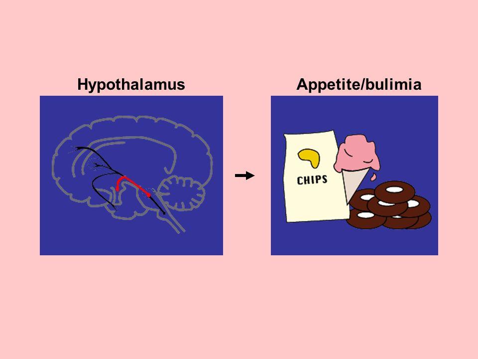 Hypothalamus Appetite/bulimia