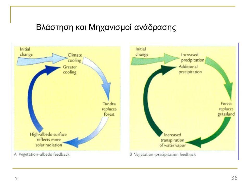 Βλάστηση και Μηχανισμοί ανάδρασης