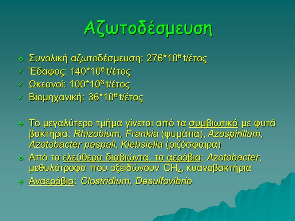 Αζωτοδέσμευση Συνολική αζωτοδέσμευση: 276*106 t/έτος