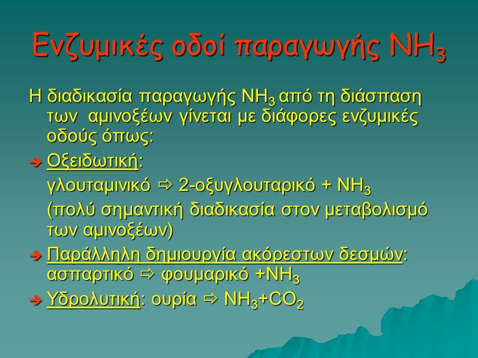 Ενζυμικές οδοί παραγωγής ΝΗ3
