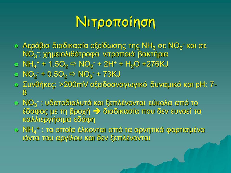 Νιτροποίηση Αερόβια διαδικασία οξείδωσης της ΝΗ3 σε ΝΟ2- και σε ΝΟ3-: χημειολιθότροφα νιτροποιά βακτήρια.