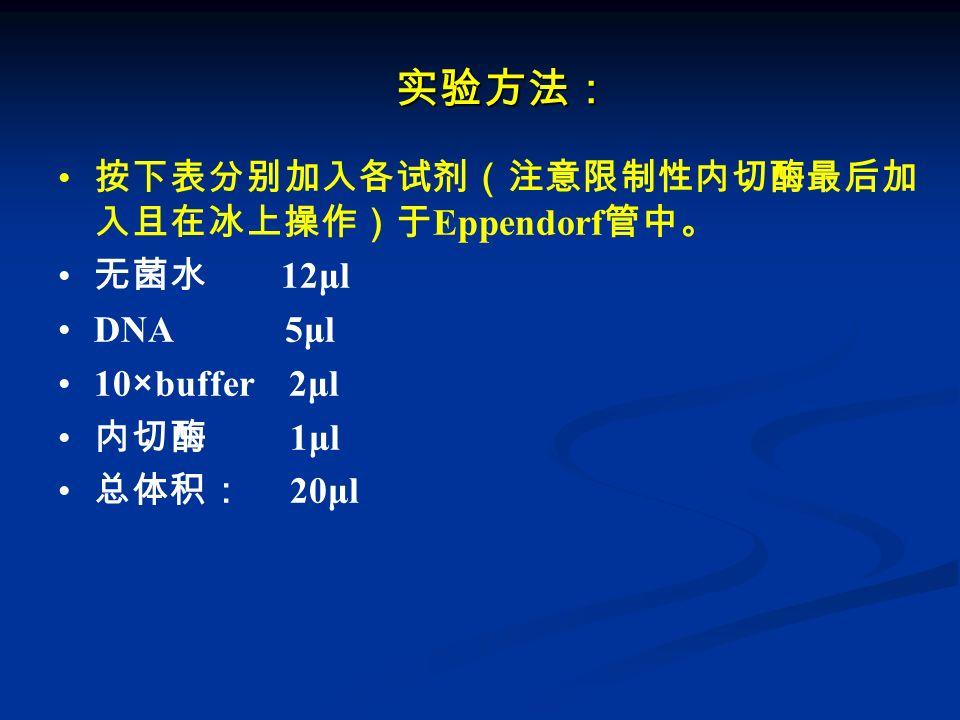实验方法: 按下表分别加入各试剂(注意限制性内切酶最后加入且在冰上操作)于Eppendorf管中。 无菌水 12μl DNA 5μl