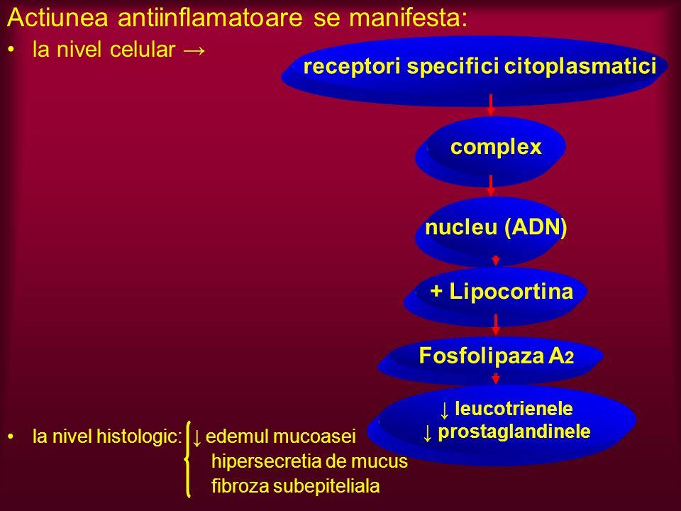 receptori specifici citoplasmatici