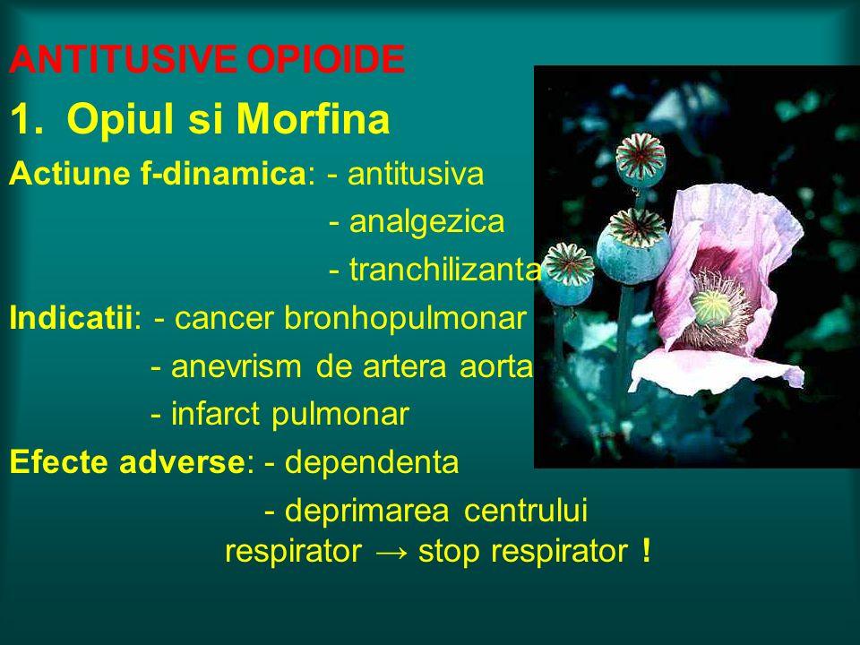 Opiul si Morfina ANTITUSIVE OPIOIDE Actiune f-dinamica: - antitusiva