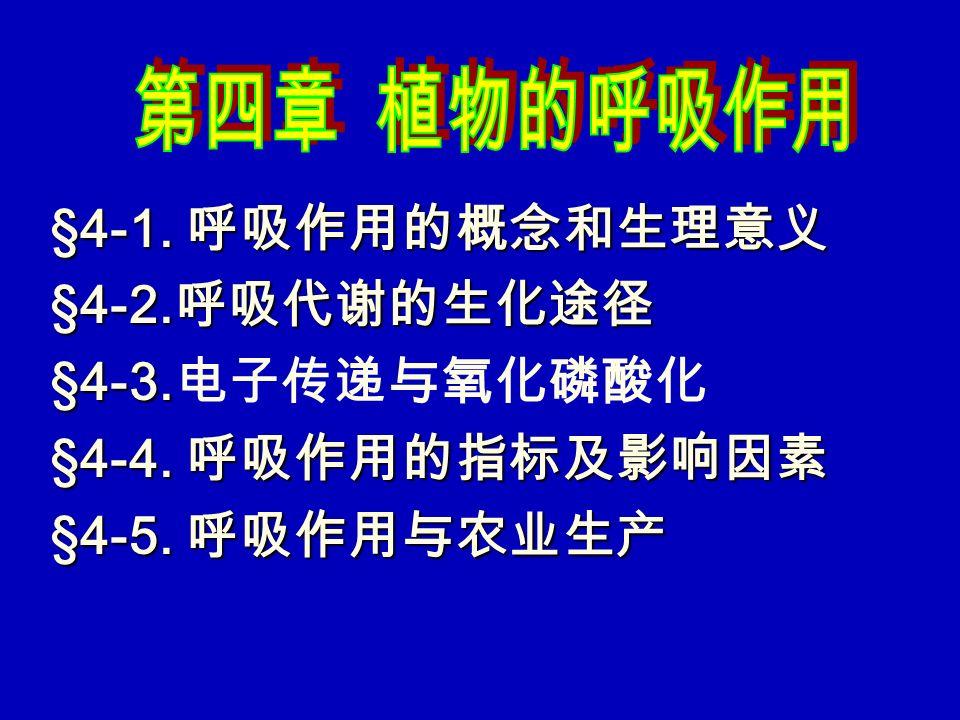 §4-1. 呼吸作用的概念和生理意义 §4-2.呼吸代谢的生化途径 §4-3.电子传递与氧化磷酸化 §4-4. 呼吸作用的指标及影响因素