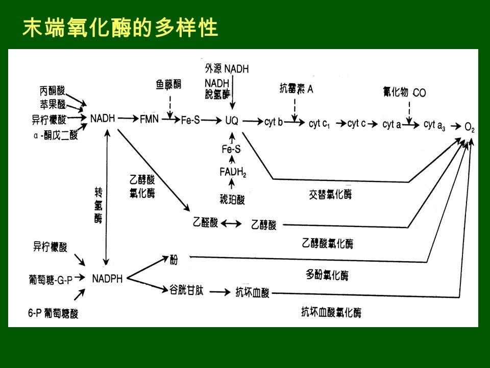 末端氧化酶的多样性