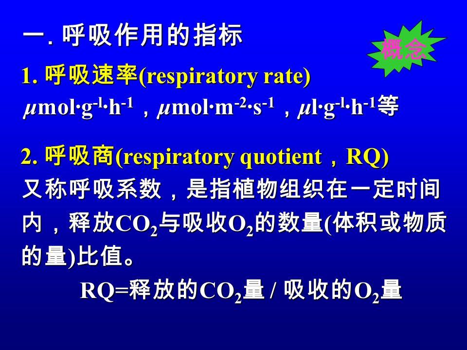 一. 呼吸作用的指标 概念 1. 呼吸速率(respiratory rate)