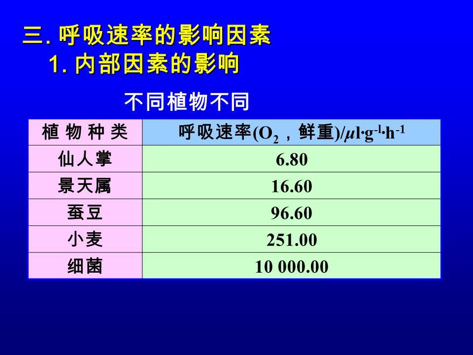 呼吸速率(O2,鲜重)/μl·g-l·h-1
