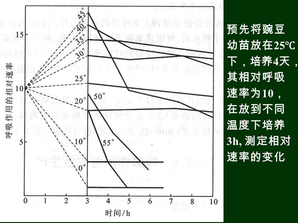 预先将豌豆幼苗放在25℃下,培养4天,其相对呼吸速率为10,在放到不同温度下培养3h, 测定相对速率的变化