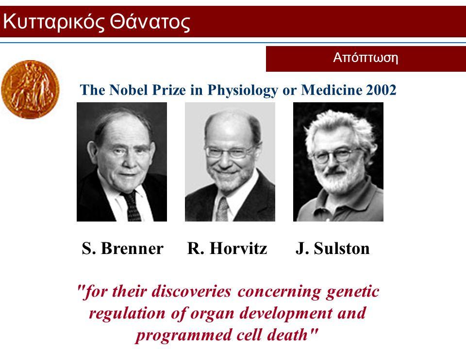 Κυτταρικός Θάνατος S. Brenner R. Horvitz J. Sulston