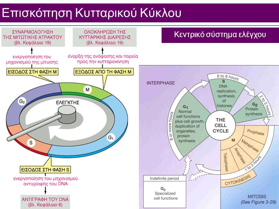 Κεντρικό σύστημα ελέγχου