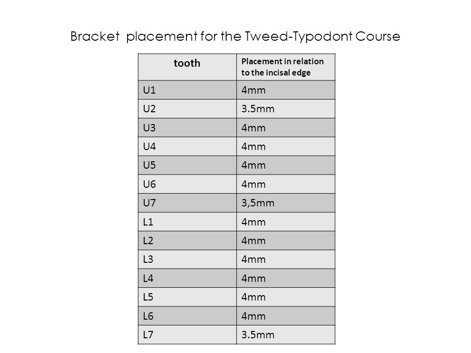 Bracket placement for the Tweed-Typodont Course