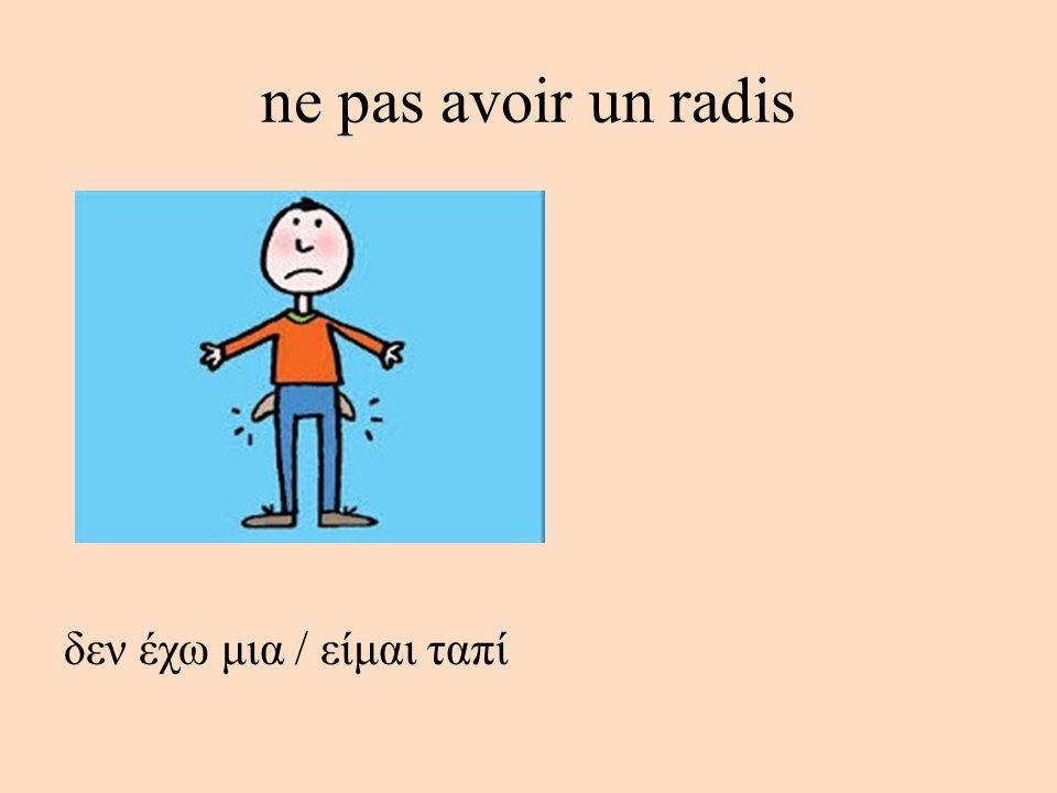 ne pas avoir un radis δεν έχω μια / είμαι ταπί