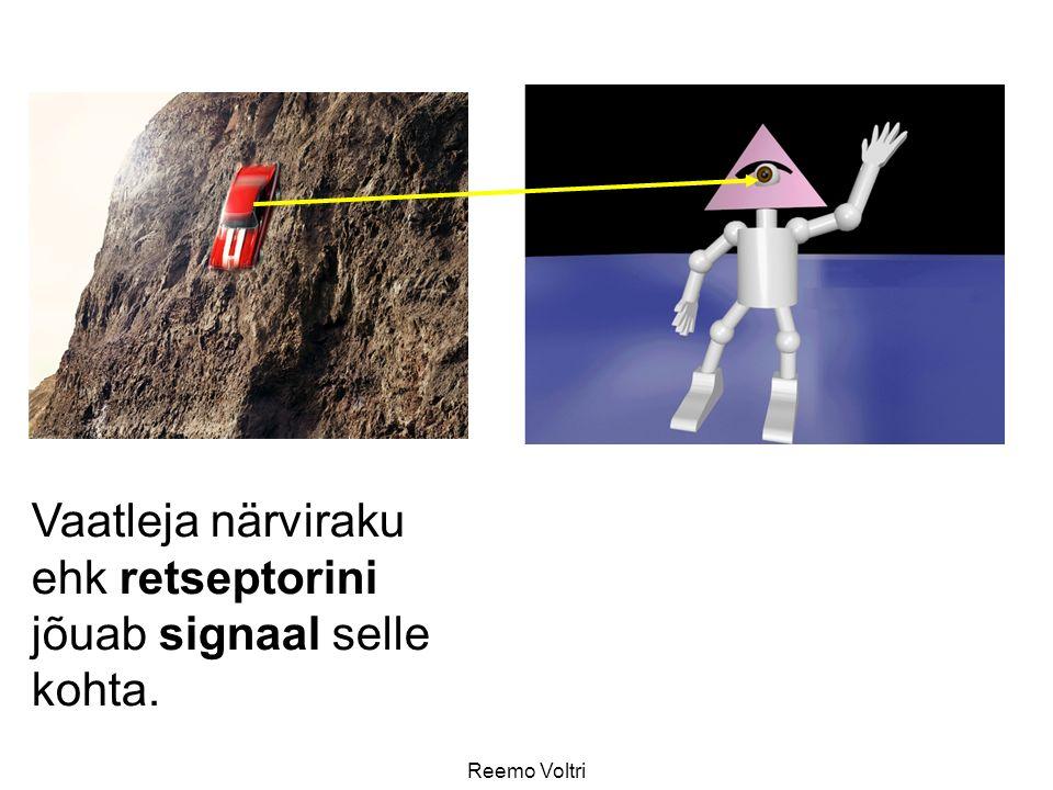 Vaatleja närviraku ehk retseptorini jõuab signaal selle kohta.
