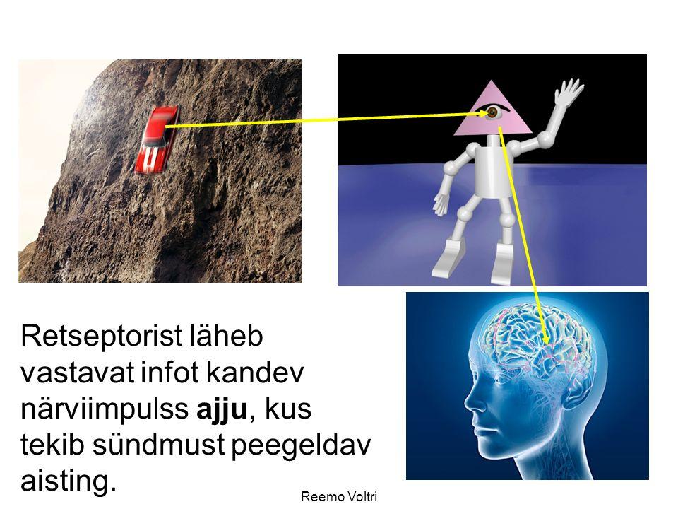Retseptorist läheb vastavat infot kandev närviimpulss ajju, kus tekib sündmust peegeldav aisting.
