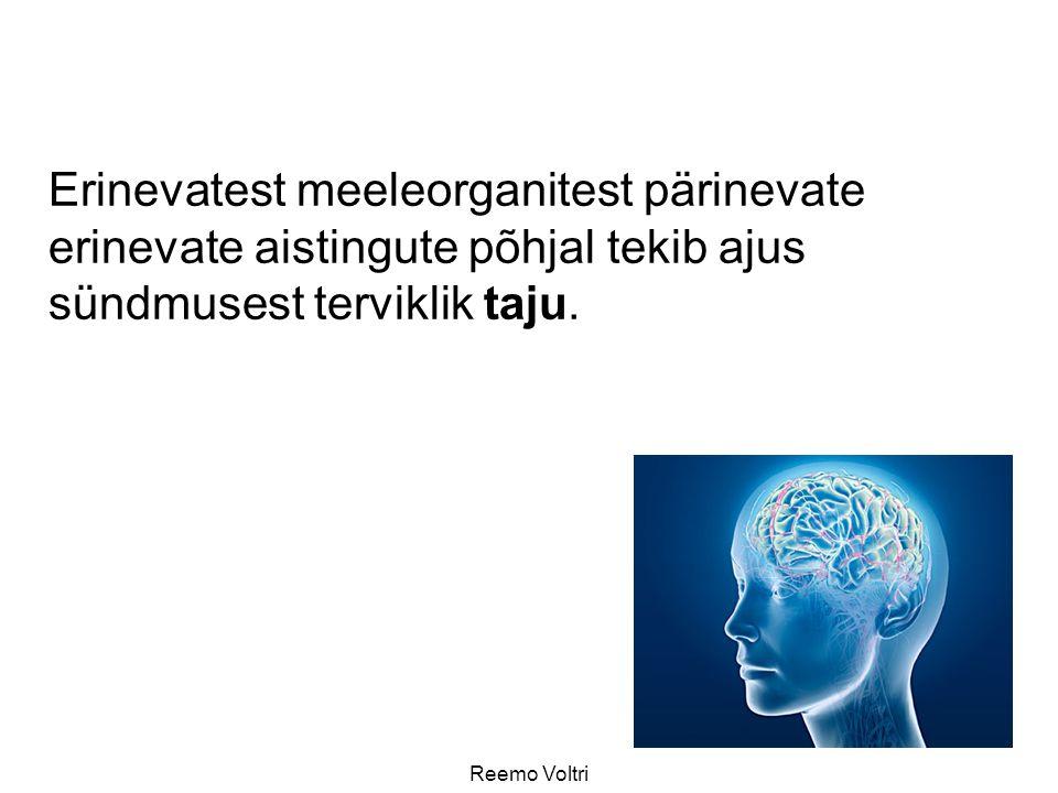 Erinevatest meeleorganitest pärinevate erinevate aistingute põhjal tekib ajus sündmusest terviklik taju.