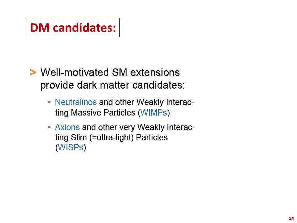 DM candidates: