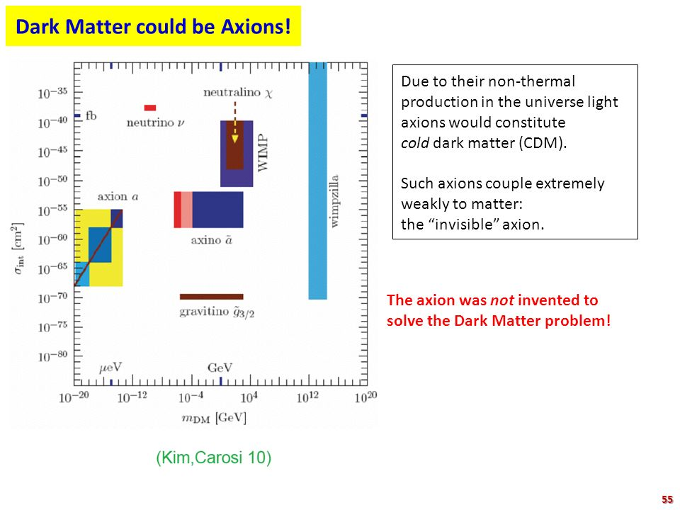 Dark Matter could be Axions!