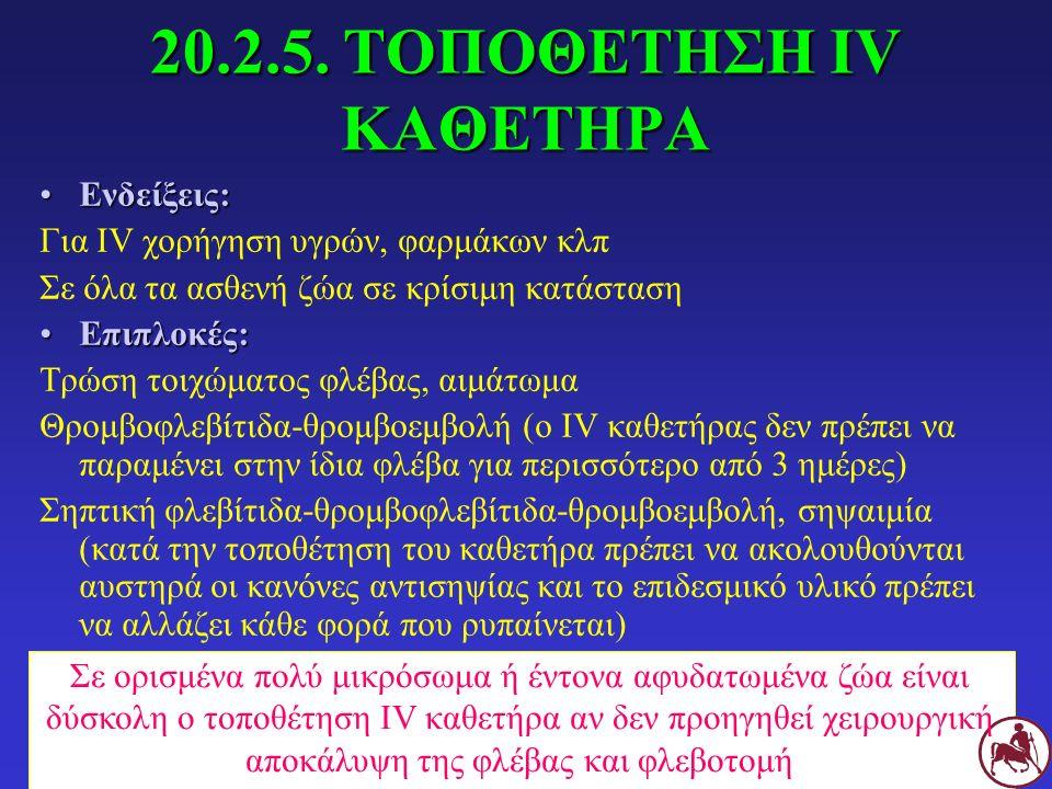 20.2.5. ΤΟΠΟΘΕΤΗΣΗ IV ΚΑΘΕΤΗΡΑ