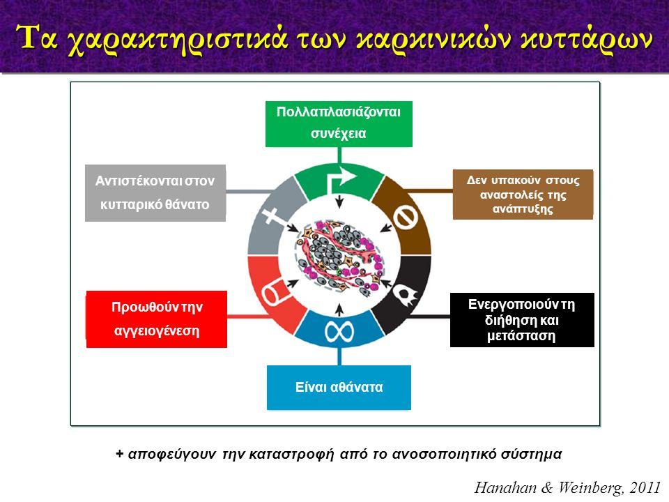 Τα χαρακτηριστικά των καρκινικών κυττάρων