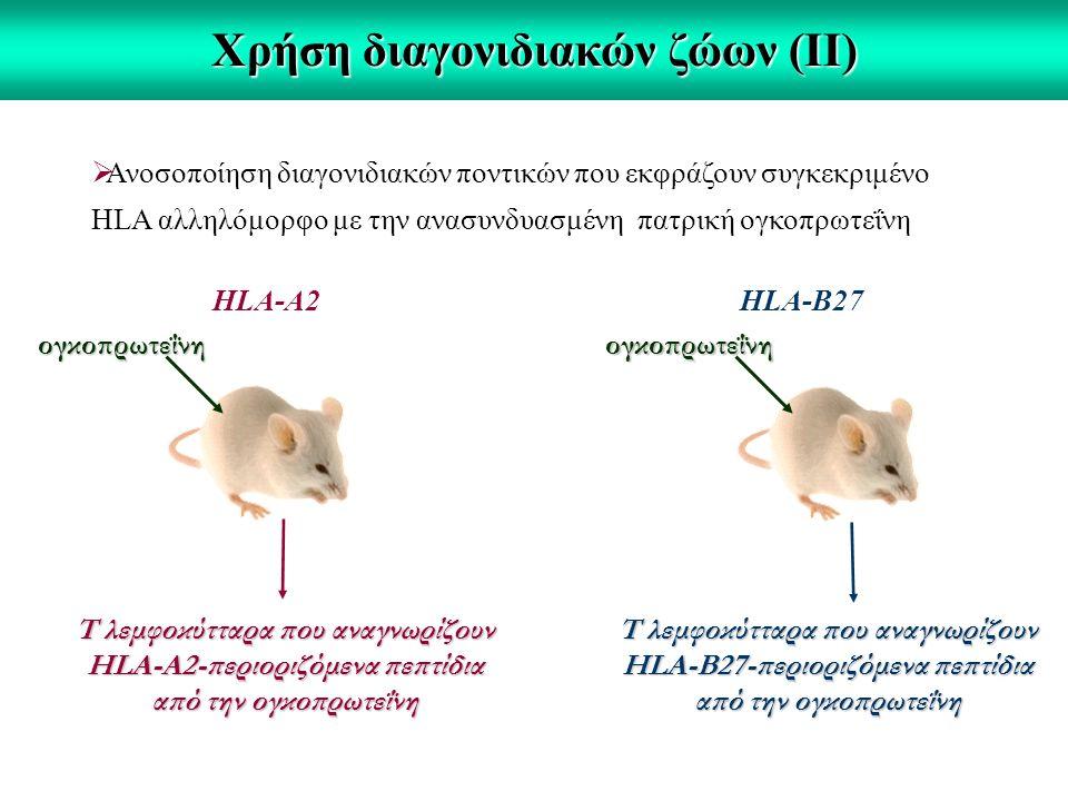Χρήση διαγονιδιακών ζώων (ΙΙ)