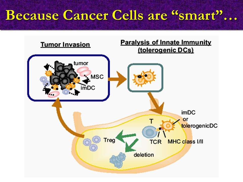 Because Cancer Cells are smart …