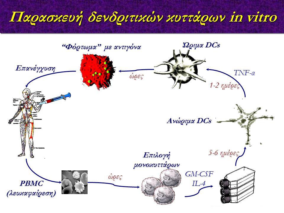 Παρασκευή δενδριτικών κυττάρων in vitro