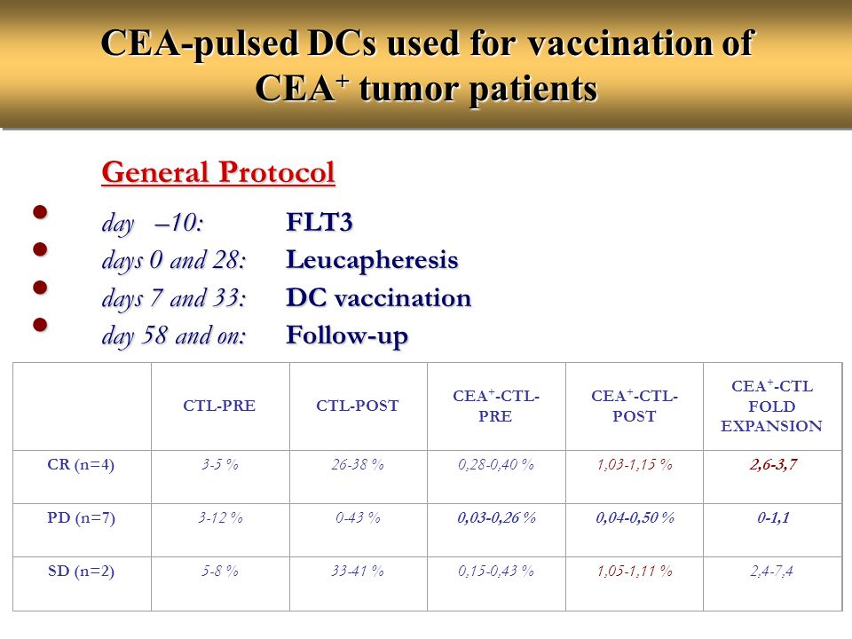 CEA-pulsed DCs used for vaccination of CEA+ tumor patients