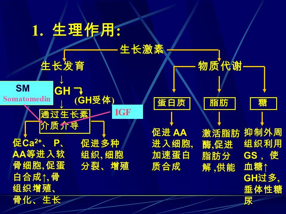1. 生理作用: 生长激素 生长发育 GH 物质代谢 ↓ 通过生长素 介质介导 SM (GH受体) 蛋白质 脂肪 糖 IGF 促进 AA