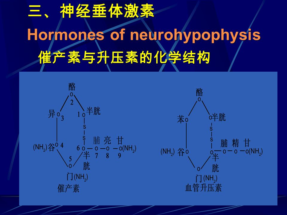 Hormones of neurohypophysis